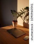 office sunlight plant shadow | Shutterstock . vector #1090960541
