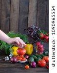 vegetable.fresh vegetables ... | Shutterstock . vector #1090965554