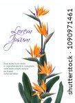 strelitzia reginae tropical... | Shutterstock .eps vector #1090971461