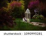 Cozy Evening Garden Scene With...