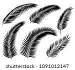 set of black silhouettes of... | Shutterstock .eps vector #1091012147