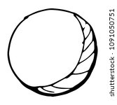black and white moon sketch.... | Shutterstock .eps vector #1091050751