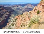 grand canyon view with yucca... | Shutterstock . vector #1091069201