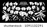 set of isolated white... | Shutterstock .eps vector #1091132291