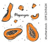 set of papaya exotic fruit in... | Shutterstock .eps vector #1091245634