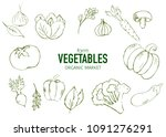 farm vegetables vector poster.... | Shutterstock .eps vector #1091276291