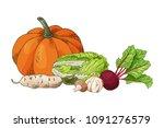 vector vegetable element of... | Shutterstock .eps vector #1091276579