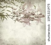textured old paper background... | Shutterstock . vector #1091321975