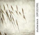 textured old paper background... | Shutterstock . vector #1091321981