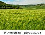 agriculture landscape in macin...   Shutterstock . vector #1091326715