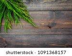 juniper frame for poster or... | Shutterstock . vector #1091368157