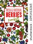 berries and fresh organic berry ...   Shutterstock .eps vector #1091413265