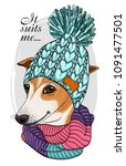 vector dog with blue knitted... | Shutterstock .eps vector #1091477501