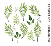 green leaves collection vector | Shutterstock .eps vector #1091535161