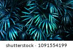 tropical leaf forest glow in... | Shutterstock . vector #1091554199