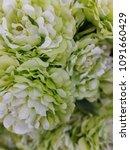 artificial flower image   Shutterstock . vector #1091660429