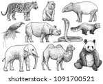 asian animals collection... | Shutterstock .eps vector #1091700521