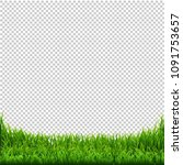 green grass border transparent... | Shutterstock .eps vector #1091753657
