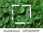 creative layout made of leaves... | Shutterstock . vector #1091820059