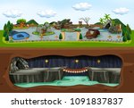 a map of zoo and underground... | Shutterstock .eps vector #1091837837
