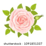 white background with a pink...   Shutterstock .eps vector #1091851337