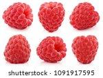 set of red raspberry berry... | Shutterstock . vector #1091917595