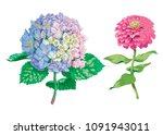 beautiful gentle flowers...   Shutterstock .eps vector #1091943011