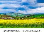 mountain valley meadow flowers... | Shutterstock . vector #1091966615