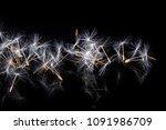 dandelion fluff on a black... | Shutterstock . vector #1091986709