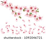 vector illustration of spring... | Shutterstock .eps vector #1092046721