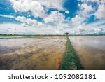 a serene view of watering and... | Shutterstock . vector #1092082181