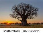 sunrise at baines campsite | Shutterstock . vector #1092129044