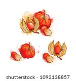 hand drawn colorful bright... | Shutterstock . vector #1092138857