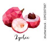 lychee. vector illustration in... | Shutterstock .eps vector #1092207587