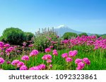 pink flowers and mt. fuji | Shutterstock . vector #1092323861