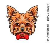yorkshire terrier dog portrait. ... | Shutterstock .eps vector #1092340394