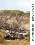 great migration in africa. huge ... | Shutterstock . vector #1092424151