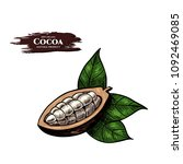 vector background with cocoa .... | Shutterstock .eps vector #1092469085