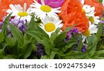 bouquet of flowers isolated on... | Shutterstock . vector #1092475349