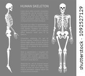 human skeleton text sample with ... | Shutterstock .eps vector #1092527129