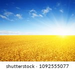 wheat field and sun in the sky  | Shutterstock . vector #1092555077