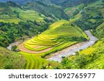 Beautiful Rice Field Terraced...