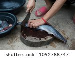 hands of women cutting fish for ... | Shutterstock . vector #1092788747