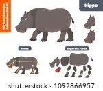 Stock vector african animal hippo for animation set cartoon style vector illustration 1092866957
