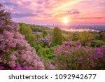 botanical garden in kyiv  kiev  ... | Shutterstock . vector #1092942677