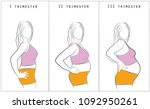 vector illustration of pregnant ...   Shutterstock .eps vector #1092950261