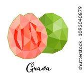 guava. vector illustration of... | Shutterstock .eps vector #1093040879