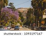 los angeles 23 november 2016... | Shutterstock . vector #1093197167