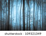 Dark Blue Spooky Forrest With...