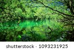 Small photo of See, Wald, Ruhe